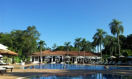 Tadoba Accommodation and Hotel Business – Essential Elements to Launch a New Venture