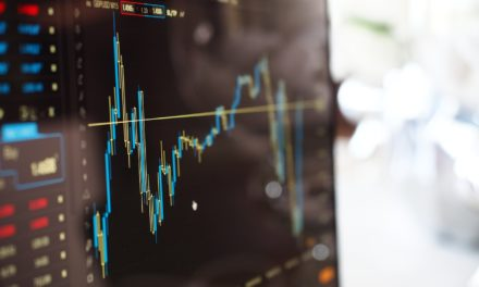 Complete Guide to a Great Stock Portfolio